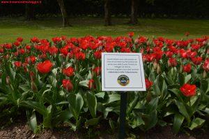 Innamorati in Viaggio, Parco Giardino Sigurtà 4