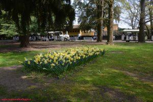 Innamorati in Viaggio, Parco Giardino Sigurtà 6
