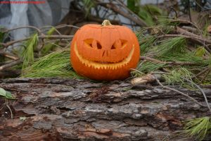 Innamorati in Viaggio, Halloween, Este da Brividi 5