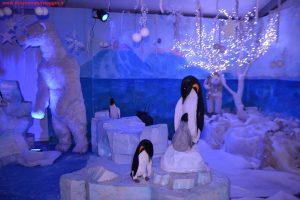Natale in Toscana a Montecatini Terme, Innamorati in Viaggio 7