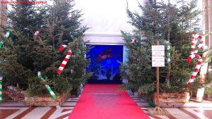 Natale in Toscana a Montecatini Terme, Innamorati in Viaggio 6