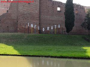 Infiorata in Veneto a Noale, Innamorati in viaggio 16